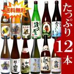 お中元 御中元 日本酒 4合瓶飲み比べセット720ml×12本 ギフト