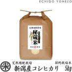 新潟 米 新潟産コシヒカリ 秘蔵米 完熟堆肥契約栽培 5kg (5kg×1袋) 新潟米 こしひかり 送料無料