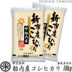 新米 28 胎内産コシヒカリ A 10kg (5kg×2袋) 厳選産地米  新潟米 こしひかり お米 送料無料