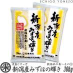 新米 29 新潟産みずほの輝き 新潟米の奏(3) 30kg (5kg×6袋) 新潟米 お米 送料無料