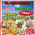 【送料無料】7月限定!夏休み満喫☆ホルモンBBQセット!!
