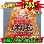 【送料無料】伝統の味!越前のみそホルモン300g!複数購入でおまけ付き!
