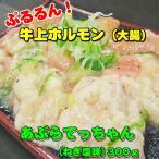 あぶらてっちゃん(ねぎ塩味)300g「焼肉」「ホルモン」【B級グルメ】