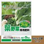 大協肥糧 葉を食べる野菜に最適! 有機入り 葉野菜専用肥料 5kg 2袋セット (1085009)