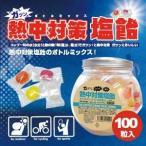熱中対策塩飴 井関食品 熱中飴 ボトルミックス(100粒入り) BR-A100 (1087888)