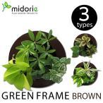 グリーンフレーム ブラウン (フレーム・ピン・取説・BOX) / ミドリエフレーム・ラウンド型 midorie 観葉植物 グリーン 土を使わない ウォールパネル