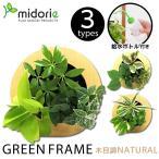グリーンフレーム 木目調ナチュラル(フレーム・ピン・取説・BOX・ボトル) / ミドリエフレーム・ラウンド型 midorie 壁掛け 観葉植物 土を使わない