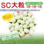【送料無料】SC大粒(硫黄コーティング肥料) 10平米用
