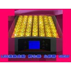 Yahoo!ecofuture最大56個 全自動孵卵器 孵卵機 ふ卵器 孵化器 インキュベーター