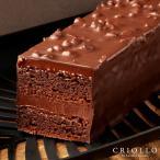 【チョコレートケーキ】 トレゾー・ナチュール 2〜3名様用【冷凍便】▲▲
