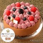 世界パティスリー プチガトー部門 優勝ケーキ ブラックベリーとチョコレートケーキ ニルヴァナ 直径15cm 約4〜6名様用 濃厚チョコケーキ 美味しい 大人な 冷凍便