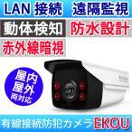 室外 室内兼用 防水 防犯カメラ スマホ・PCで監視 有線LAN接続 WEBカメラ ネットワークカメラ 暗視 監視カメラ LS-R2