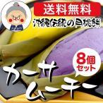 ムーチー 送料無料(鬼餅)カーサムーチー 8個セット 小さめサイズ 月桃の葉でくるんだ沖縄伝統のお餅|月桃もち|