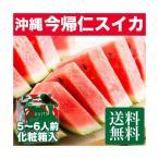 お中元 ギフト 今帰仁スイカ 1玉  送料無料!沖縄の旬のフルーツを贈ろう♪パイナップルやマンゴーと並ぶ人気を誇るブランドスイカ♪  |果物 |