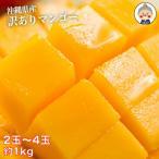 マンゴー 果物 フルーツ 訳あり 沖縄産マンゴ 2-4玉 1kgセット 送料無料 リピーター続出の甘さ 【7月中旬〜順次発送予定】|マンゴ|