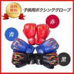 ボクシング グローブ 親子 で 練習 トレーニング ストレス 解消