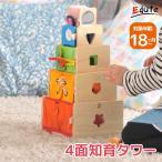おもちゃ 知育玩具 木のおもちゃ 赤ちゃん 1歳 2歳 誕
