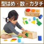 知育玩具 木のおもちゃ 1歳 2歳 誕生日プレゼント 男の子 女の子 型はめパズル 色合わせ 分数 4ラーニングコンパニオンボックス ImTOY アイムトイ
