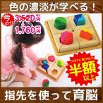 [ボイラの木のおもちゃ] フィットミーイン2 / 知育玩具 パズル 型はめ 誕生日 3歳 4歳 女の子 男の子 VOILA
