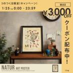 Natur Art Poster アートポスター ポスター ウッドフレーム