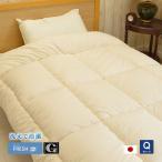 インビスタ社 ダクロン クォロフィル アクア 掛布団 洗える 日本製 クィーン(約210×210cm)軽い 暖かい アレルギー対策