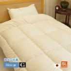 インビスタ社 ダクロン クォロフィル アクア 掛布団 洗える 日本製 シングル(約150×210cm)軽い 暖かい 保湿性 アレルギー対策