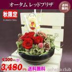 売れてます 枯れない魔法のお花 オータムレッドプリザが3,480円 送料無料