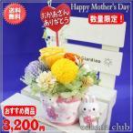 3,000円以上5,000円以下、送料無料、「母の日」「ギフト」