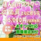 従業員さんに贈る花 15,000円   送料無料     花束・アレンジ・プリザーブドフラワー・はちもの