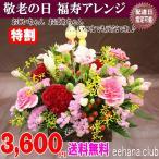 敬老の日に送る新鮮なお花 福寿アレンジ3,680円 送料無料