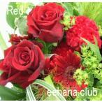 色で選ぶフラワー レッド 7,000円  花 ギフト バースデー お祝い プレゼント 結婚祝 出産祝 お見舞い