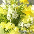 色で選ぶフラワー イエロー 5,000円  花 ギフト バースデー お祝い プレゼント 結婚祝 出産祝 お見舞い