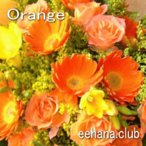 色で選ぶフラワー オレンジ 3,000円  花 ギフト バースデー お祝い プレゼント 結婚祝 出産祝 お見舞い
