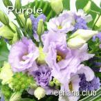 色で選ぶフラワー パープル 10,000円  花 ギフト バースデー お祝い プレゼント 結婚祝 出産祝 お見舞い 送料無料