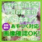 デザイナーにおまかせ 花 ギフト バースデー7月の誕生花20,000円 送料無料   フラワーアレンジ・花束