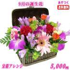 花 ギフト バースデー9月の誕生花 宝箱アレンジ3,500円 送料無料  花言葉付き りんどう   写真付きメッセージ選択可