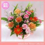 花 ギフト バースデー11月の誕生花 カラフルアレンジ3,500円 送料無料  花言葉付き ブバリア   写真付きメッセージ選択可