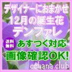 花 ギフト バースデー12月の誕生花デザイナーにおまかせ5,000円 送料無料   デンファレ   フラワーアレンジ・花束
