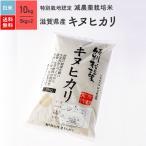 米 お米 10kg キヌヒカリ 滋賀県産 特別栽培米 白米 令和元年産