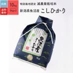 特別栽培米 魚沼産コシヒカリ 米 10kg 送料無料 29年産