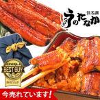 うなぎ 蒲焼き ウナギ 鰻 誕生日プレゼント お祝い返し 内祝い 2本 風呂敷 furoshiki-gset 1〜2人用