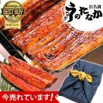 国産うなぎ 蒲焼き お祝い返し 誕生日プレゼント 鰻 2本セット F-tn2