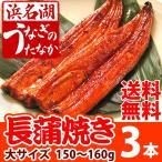 国産うなぎ通販 海産物 お祝い 蒲焼き大サイズ 3本[鰻]