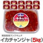 冷凍 10個韓国味キムチ 生イカキムチ5kg 500g袋10個