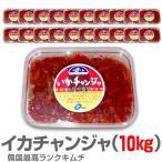 キムチ 冷凍  生イカキムチ10kg 500g袋×20 非冷凍品同梱不可