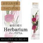 ハーバリウム BP-18103 セッシェグラス 2.ローズピンク  松村工芸 母の日 プレゼント ギフト 誕生日 女性 フラワー