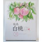 福島白桃シフォンケーキ (大) 20個入り 福島土産
