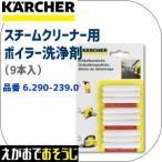 ケルヒャー スチームクリーナー用 スケール除去剤 RM511  (6.290-239)(←6.295-206)