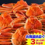 かに カニ 蟹 ズワイガニ ボイル | 北海道紋別浜茹で ずわいがに姿 3kg超(4〜5杯)