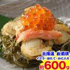 北海道 箱館海鮮松前漬 約600g(約150g×4個)